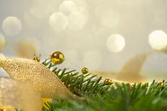 Christmas seasonal background with spruce and golden beads Stock Photos
