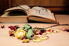 dry rose and the old book - stock photo
