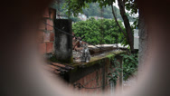 Stock Video Footage of Favela cat