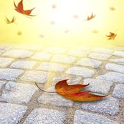 Leafs falling on a cobble road Stock Illustration