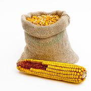 bag of corn kernels and a corn ear - stock photo