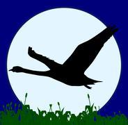 Stock Illustration of swan