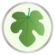 Fig leaf button Piirros
