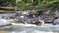 Mountain river rapids and bamboo bridge . Dumaguete, Philippines. Stock Footage
