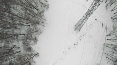 Electricity lines along swath in winter park on Elk island Stock Footage