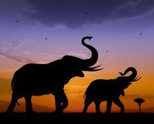 Elephants Stock Illustration