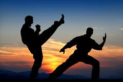 Stock Illustration of martial art