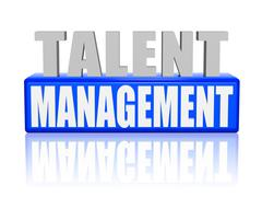 talent management in 3d letters and block - stock illustration
