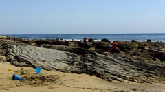 Kids Exploring Rocky Tidepools- Crystal Cove State Park Beach Stock Footage