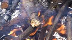 Burning Logs. Fire flame. Hot logs burn together in a hot fire Stock Footage