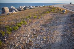 Eroded limestone stacks along the shoreline on the island of faro Stock Photos