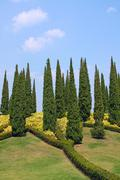 cypress trees and flower beds in botanical garden - stock photo