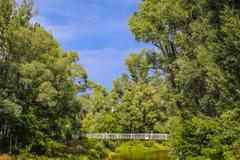 andscape with wood river and bridge - stock photo