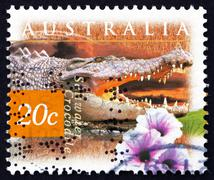 Postage stamp Australia 1997 Saltwater Crocodile and Kangkong Fl Stock Photos