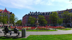 Hyperlapse Time Lapse Spring Flower blossom in Square Platz park Munich Germany Stock Footage