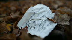 leaves fall on a musical sheet - stock footage