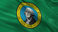 US state flag of Washington seamless loop Stock Footage
