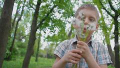 Little boy 6 years blowing dandelions Stock Footage