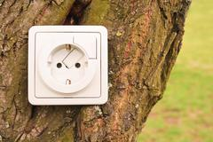 electric outlet on a tree - stock photo
