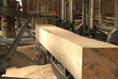 Sawing pine wood, lumber Stock Footage