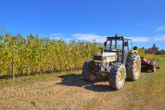 Tractor at harvesting in piedmont, italy. Stock Photos