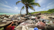 Stock Video Footage of Polluted  caribbean beach