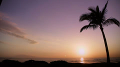 HD Time-Lapse Tropical Beach Sunset With Palm Tree Stock Footage
