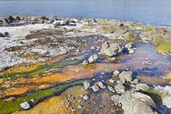 Detail of colorful algae around hot springs at lake bogoria in kenya. Stock Photos