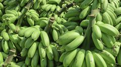 Pile of green banana called kluay khai - stock photo