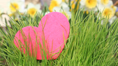 Heart in green grass Stock Footage