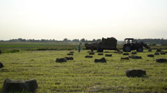 Farmer workers people load dried hay bales to tractor trailer Stock Footage