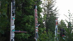 Totem poles - stanley park side view HD Stock Footage