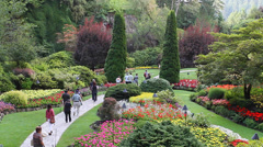 Medium shot people walk at the butchart gardens Stock Footage