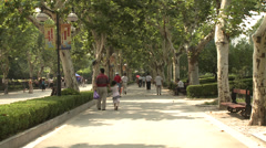 Large crowd dancing under trees 6 Stock Footage