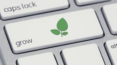 Grow Keyboard Button Green Leaves Icon Stock Illustration