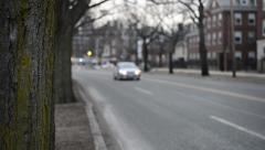 Shallow DOF Tree With Traffic Stock Footage