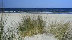 Coastline with surf and beachgrass Stock Footage