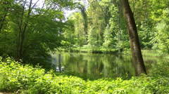 Spring pond in the Groenenberg park. Stock Footage