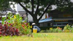 "An Asian gardener ""miniature"" time lapse Stock Footage"