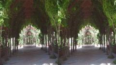 Garden arch Stock Footage