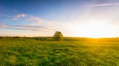 Summer landscape with a sunset, panoramic timelapse Stock Footage