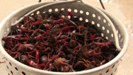 Stock Video Footage of Crawfish in boiling basket about to go into boiler