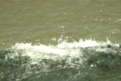 Water, clean, nature Stock Footage