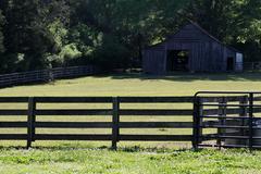 Horse Barn WS - stock photo