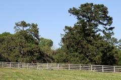 Horse Ranch Fence Stock Photos