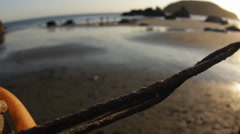 Driftwood on the beach Stock Footage