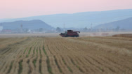 Stock Video Footage of Thresher reap the wheat near the village