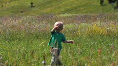 Adorable little boy running on blossom meadow, fallen downand get up, keep going Stock Footage
