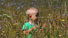 Cute little boy walking in flourish meadow with big flowers Stock Footage