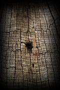 very old textured oak wood, image taken on ancient wooden romanian church, st - stock photo